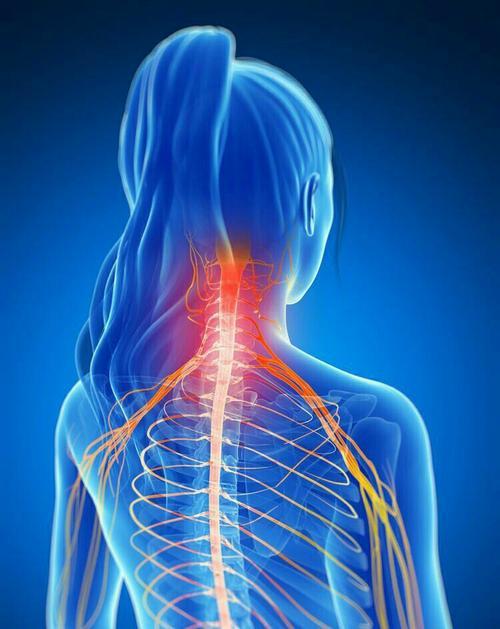 颈椎病的临床表现是什么