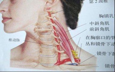 颈椎病都有哪些临床表现